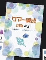 中学サマー練成 中3 社会